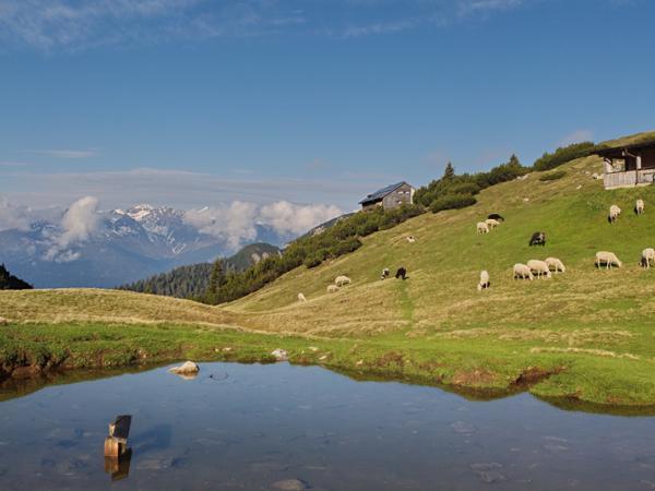 Im Hintergrund die nordlichen Stubaier Alpen