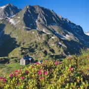 Die Hütte liegt im Bereich der vergletscherten Berge des Alpein